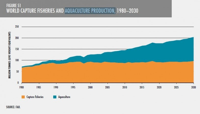Aquaculture Production