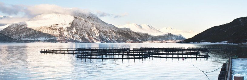 Fish Cages Norway
