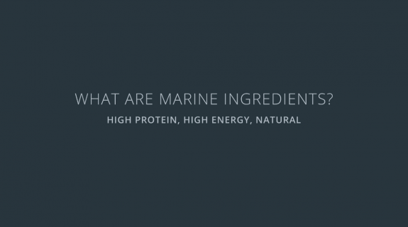 What are marine ingredients?