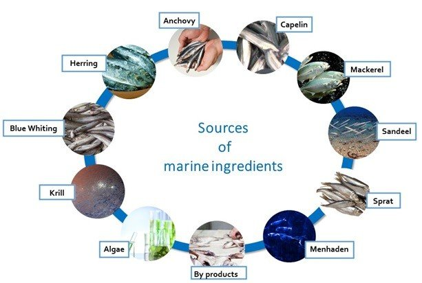 Marine ingredients